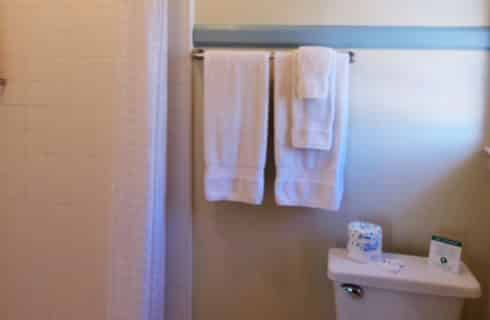Towels on rack in bathroom next to shower curtain